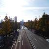 駅からハイキング:新宿区博物館巡りと神宮外苑いちょう並木1(信濃町駅~四谷大木戸跡)