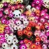 4-3   愛すべき花たち〜綺麗に咲いていますが、花の命は…〜