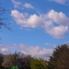 ロックダウン3週目と飛行機雲と