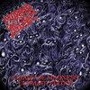 Morbid Angel 「Altars Of Madness」