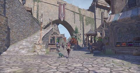 遂にスカイリムの地を踏む『The Elder Scrolls Online』拡張パックがやって来た近況日記