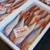 2021年3月13日 小浜漁港 お魚情報