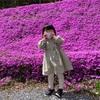 【月報】4月まとめ(趣味と独身生活)