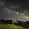 DxO PureRAW と Topaz Sharpen AI を使って,星景写真を現像し直してみた【桜と天の川】