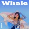 【歌詞訳】SEJEONG(セジョン) / Whale