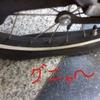 コミュニティサイクル 自転車パンク 運営事務局が電話出ない