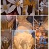 螺旋のグルーブ -開花- 開催断念