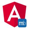AngularプロジェクトにNCMBを追加する