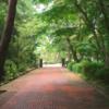 神戸ABCの旅(7)「G」外国人墓地