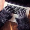 ブログアクセスが激減して改めて感じたブログのある生活