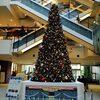マークイズみなとみらいクリスマスツリー見てきたよ!(イベントみなとみらい)みなとみらい駅周辺情報