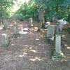 齋藤家には、30を超える墓石があるんです!!!