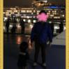 横浜→東京の夜景クルーズ 東海汽船「東京湾夜景航路」のクリスマスクルーズ
