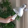 LEDと蛍光灯と白熱電球を比較。ルーメンって何?
