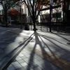 光と影を撮る