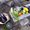 ウテナ収穫祭