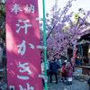 毎日一枚。「汗かき地蔵。」おすすめ度:☆☆☆ ~写真で届ける伊勢志摩観光~