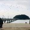 竹島 八百富神社参拝
