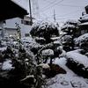 初雪エトセトラ