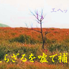 楽山の短絡宗教2