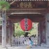 「浅草寺のポイント46000倍キャンペーンがやばい」の回