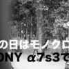 雪の日はモノクロで撮ろう!SONY α7SⅢのクリエイティブルックの作例『BW編』