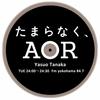 2016年11月15日 FM YOKOHAMA「たまらなく、AOR」 女性ヴォーカル特集 バーシア/シモーネ/シャーデー