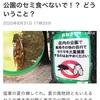 NHKの攻めるニュース セミ編