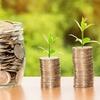 iDeCo運用実績(2020年5月末時点)【投資リテラシーを身につけよう】