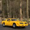 '77 Pontiac Firebirdに乗って、満開の水芭蕉を見に。