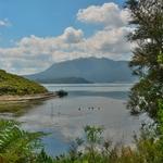 「ワイマング火山渓谷(Waimangu volcanic valley)」~「ロトマハナ湖(Lake Rotomahana)」に辿り着く!!
