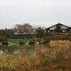 冬鳥の飛来地を訪ねて2 新潟県福島潟3