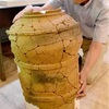 上部が球状、全国初の埴輪 京都・五塚原古墳で出土