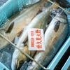2021年7月17日 小浜漁港 お魚情報