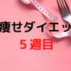 【検証】脚痩せダイエット5週目!!食事メニューも大公開!