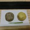 ごま団子と芋餅でゆるり「禅と茶の集い」便り(222)