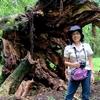 コスタリカ 背景は西公園の倒木