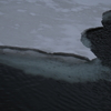 水の下の氷