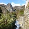 【登山】1月後半の鷹ノ巣山~稲村岩尾根から倉戸山登山口へ、熊との遭遇?