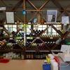 防腐剤不使用の、しかも地場特産のぶどうを使ったワインが楽しめる。井筒ワイン。