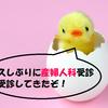 3ヶ月ぶりの産婦人科受診!