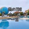 【インパ日記】雨の日ディズニー!14時からの楽しみ方