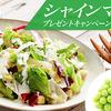 サラダクラブ&JA全農長野共同企画|シャインマスカットプレゼントキャンペーン