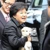 韓国「住民からのプレゼントではなかった…朴槿恵前大統領の珍島犬」