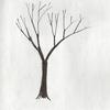 ブルーノ・ムナーリ著『木をかこう』を読んで、木をえがいてみる
