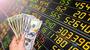 個人投資家が株で勝てない理由とは?