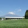 平石屋 (富士宮やきそば) 〜富士山一周サイクリング 二日目(2)〜