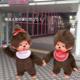 横浜人形の家 モンチッチ展が開催!【モンチッチイベント】