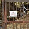 丹波市観光100選『独鈷の滝・不二の滝』の写真編