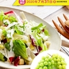 【20/07/31】サラダクラブ シャインマスカットプレゼント【バーコ/はがき】